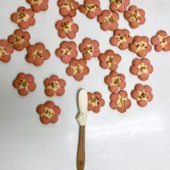 おもしろクッキー~アーモンドの木~